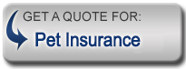 Get a quote for Pet Insurance